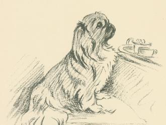 Antique Dog Print, Pekingese by Lucy Dawson