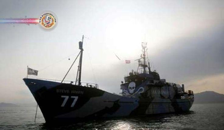 Navios da Sea Shepherd partem para lutar contra a frota baleeira japonesa. Dois navios deixaram a Austrália em direção ao Oceano Antártico, para...