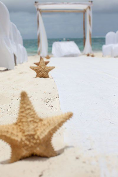 Line your aisle with starfish stuck in the sand.Photo Credit: Leigh Skaggs Photography