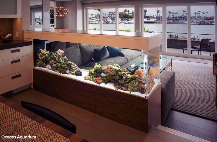 200 Gallon Living Reef Custom Aquarium Room Divider