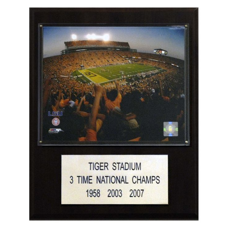 NFL 12 x 15 in. Tim Brown Oakland Raiders Player Plaque - 1215TIMBROWN