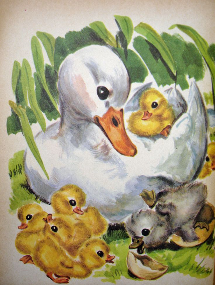 The Ugly Duckling, illustrated by Marge Opitz