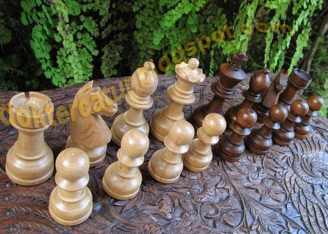 http://doktercatur.blogspot.com wooden chess from central Java