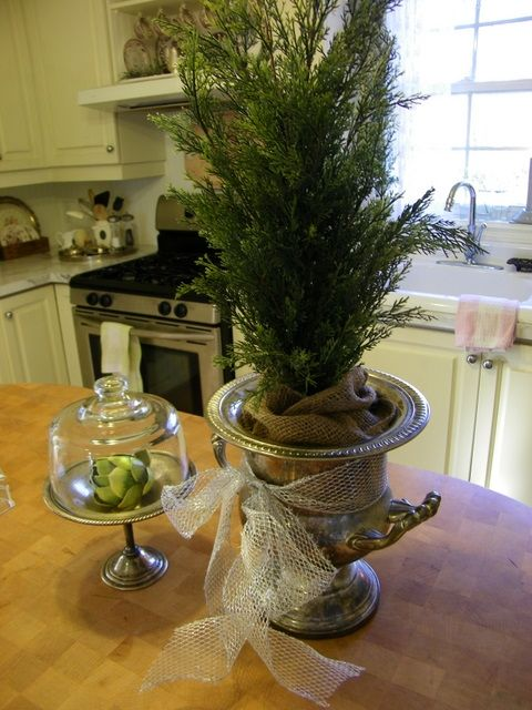 I'm buying a rosemary tree this year, I have a silver ice bucket & doing this for the table!