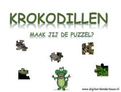 Digibordles Krokodillen tellen 1 tot 20 met puzzel.