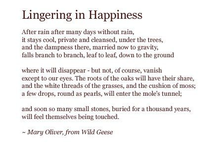Poem lingering in happiness from her book wild geese oliver s poem