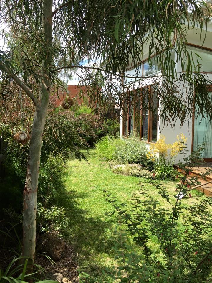 Small garden - Sam Cox design