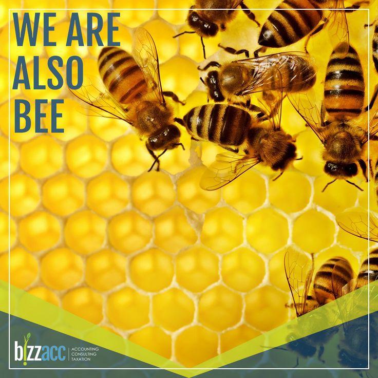 Bizzacc is a level 2 B-BBEE compliant company. Learn More → http://www.bizzacc.co.za or info@bizzacc.co.za or 082 747 7945
