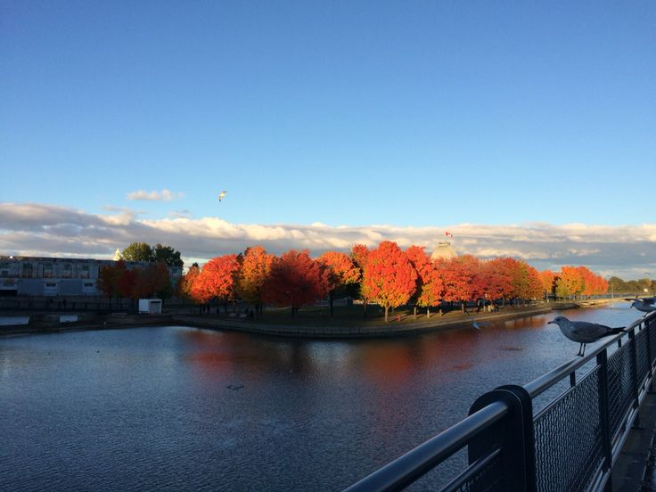St Lawrence river, Montreal