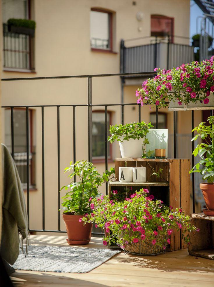 Les 21 meilleures images du tableau jardinage sur for Jardinage decoration jardin