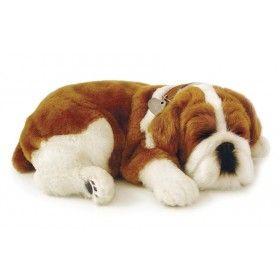 Peluches que respiran - Perfect Petzzz - Bulldog Peluches de perros, ya puedes elegir la raza que más te guste.  Llevan su camita, collar, su peine y certificado de adopción. Con un mecanismo que los hace respirar,  parecen de verdad.  Miden unos 27 cm y están realizados con pelo sintético.