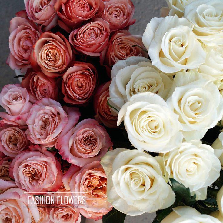 Нежные и такие красивые розы ждут вас в салоне🌹  C любовью, Fashion Flowers💞  +7(3952) 588-500 Сайт: www.f-f.flowers Viber/WhatsApp 8964-35-88-500 🏦 г. Иркутск, ул. Партизанская 29  #FashionFlowers_irk #Иркутск #розыиркутск #розыдоставка #detail #доставкацветовиркутск #подарки #декор #плаймпакет #коробкидляцветов #БукетДняИркутск #ЦветыИркутск #Irkutsk #подаркиИркутск #доставкаИркутск #Fashion_Flowers_38