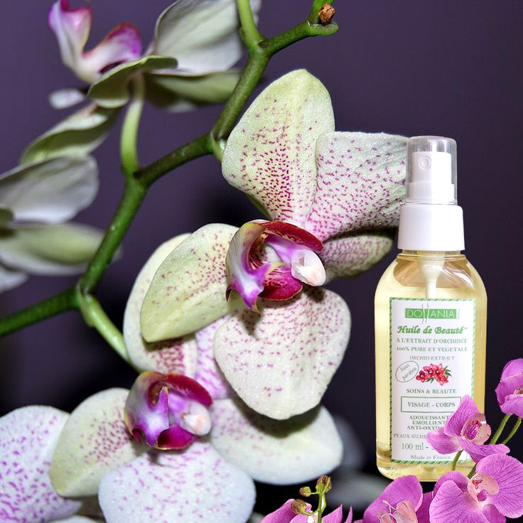 Ulei cu extract de orhidee Vegetal, 100% pur Uleiul cu extract de orhidee este foarte bogat în proteine şi minerale. Are putere emolientă asupra pielii. Este benefic mai ales pentru pielea uscată şi foarte uscată. De asemenea, conţine compuşi fenolici, care îi conferă uleiului o acţiune antioxidantă. Reduce electrizarea părului şi se poate folosi atât pe părul ud, cât şi pe părul uscat. Oferă tenului hidratare şi are proprietăţi anti-îmbătrânire. Nu conţine parabeni. Cantitate : 100 ml.