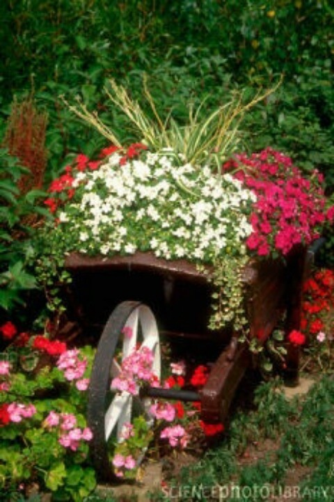 Flower Garden Ideas With Old Wheelbarrow 432 best wagon & wheel gardens images on pinterest | flower