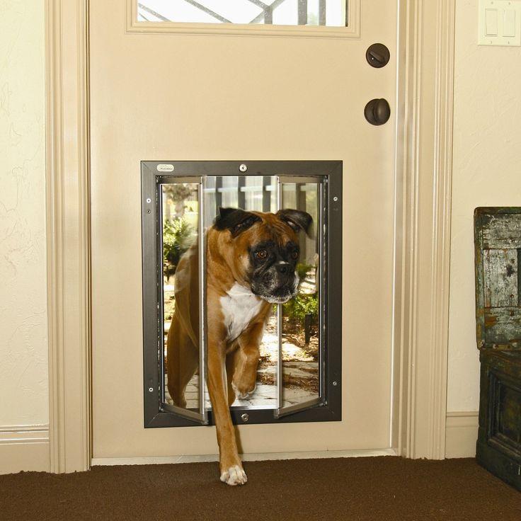 dog doors dog and owner reprievepictures of dogs and all about dog in dog door for & Best 25+ Sliding door dog door ideas on Pinterest | Patio dog door ... pezcame.com
