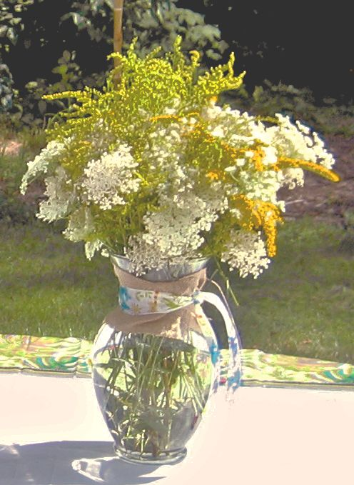 Wildflowers: Queen Anne S, Google Image, Adorable Centerpieces, Wildflowers Flowers, Queen Anne Lace In Hair, Image Results, Wildflowers 1 Jpg 496 679, Anne S Lace, Queen Annes Lace