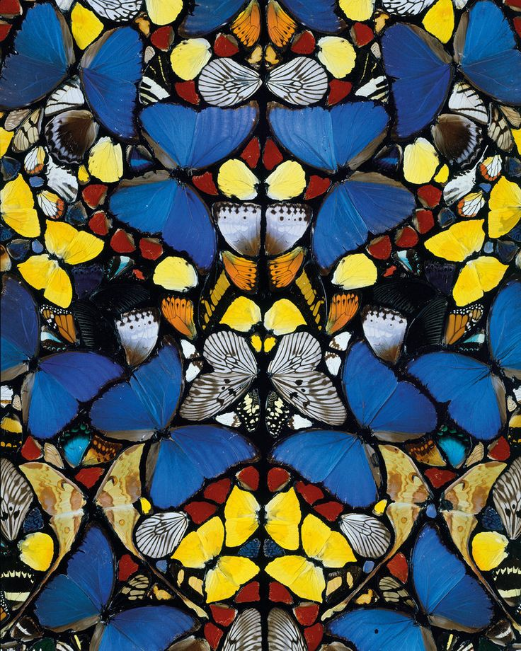 Love the Kaleidescope/repeating pattern - textile?  Damien Hirst