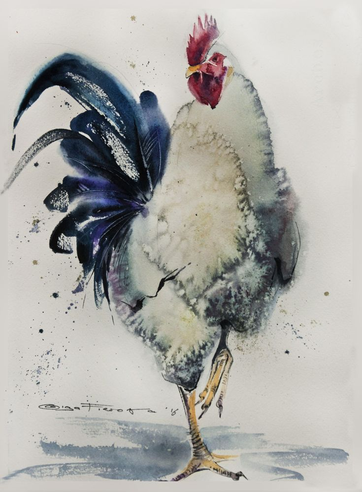 white rooster  28*38 sm watercolor on paper @ Olga Flerova                                                                                                                                                                                 More