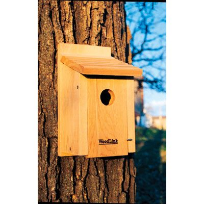 "BB1 Description: Bluebird House. 1 1/2"" hole size. Dimensions: 6.25"" D x 7.125"" W x 11.75"" H"