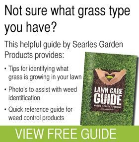 17 Best images about Lawn Care Guide on Pinterest | Gardens, The ...