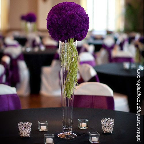 Best ideas about purple carnations on pinterest