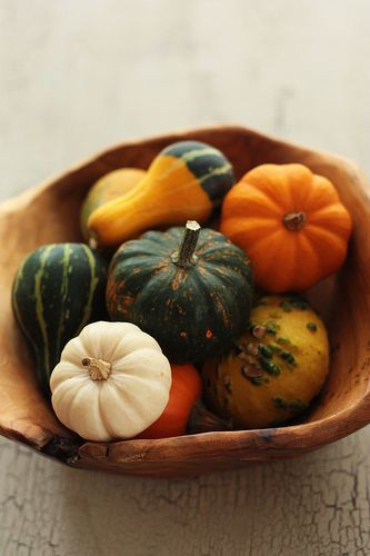 Gourds in a wood bowl