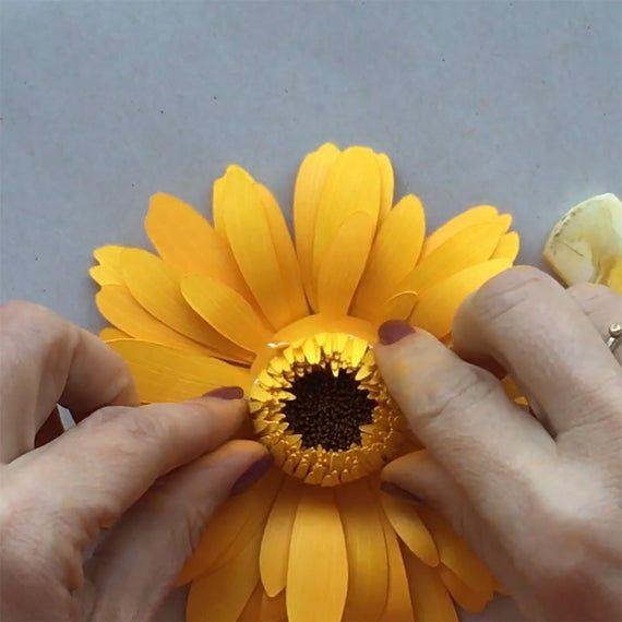 Gerbera Daisy 5 3d Paper Flower Template For Cricut And Etsy In 2020 Paper Flower Template Paper Flowers Paper Sunflowers