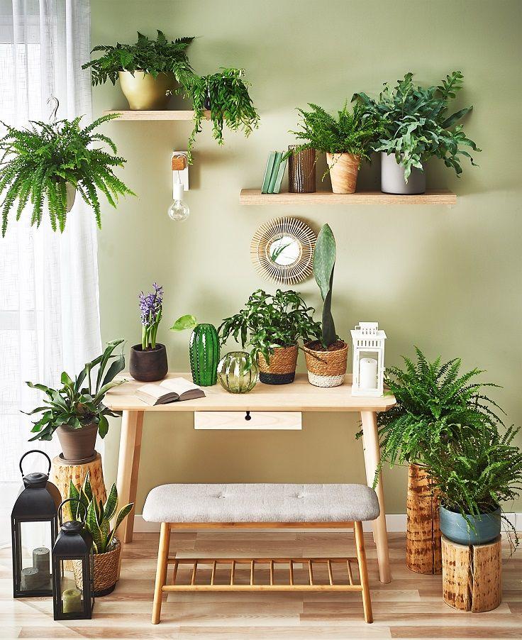 Zielony Kacik Inspiration Bamboo Planter Pots