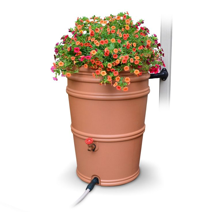 Franklin County Ohio Friends did you know you can earn a $50 rebate on a new Rain Barrel, Compost Bin or native plants thru the Community Backyards Rebate Program? I LOVE this program. 😍 You earn your rebate by learning how to protect our environment!