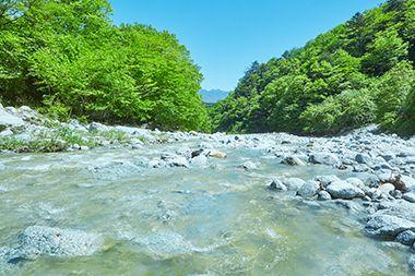 白州の味わいをつくる、天然水の源流を訪ねる 白州コミュニティ 森香る暮らし サントリー