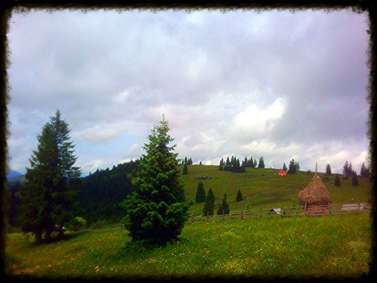 https://flic.kr/p/j7Wmon | Bucovina    - North Romania
