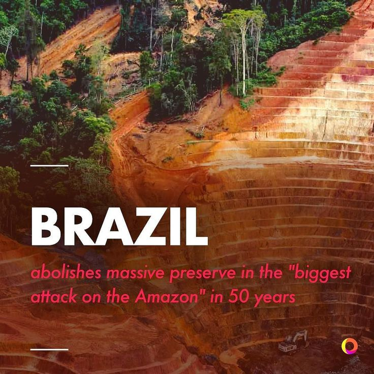 """Michel Temer the President of Brazil has abolished a reserve in the Amazon the size of Denmark. The Renca reserve spans 17700 square miles. Senator Randolfe Rodrigues opposes the move calling it the """"biggest attack on the Amazon of the last 50 years."""" . The government claims that the changes will not affect indigenous territories and conservation areas in the reserve however activists warn that past commercial exploitation by big companies has led to abuse of exactly these things. Christian…"""