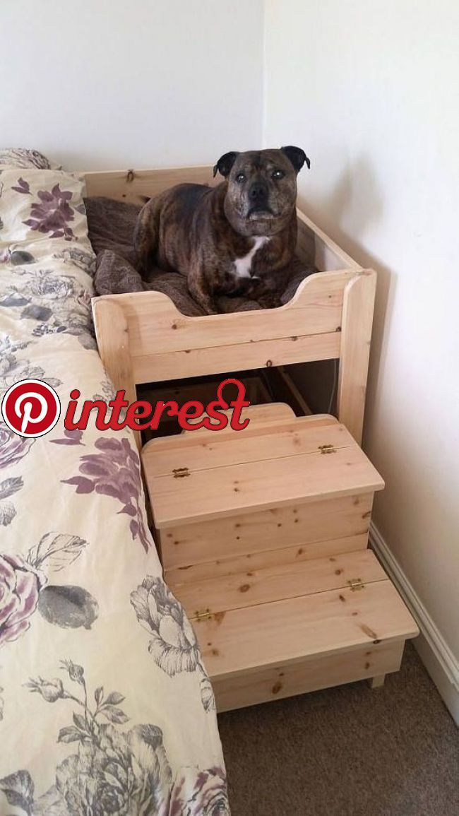 The Benson Co Sleeper Wooden Raised Dog Bed With Storage