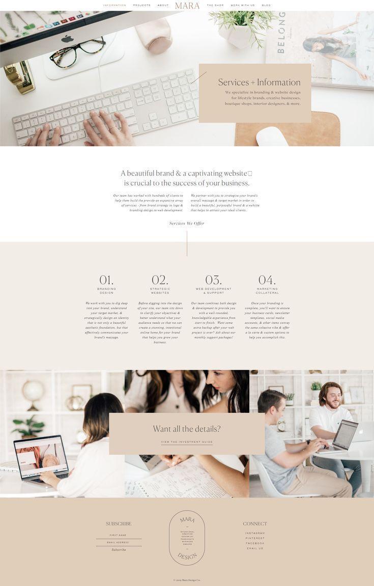 Information Clean Web Design Feminine Website Design Web Design Studio