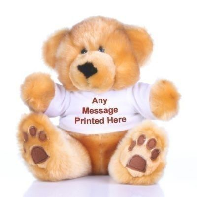 £18.99 Cuddle me! Add a message to this teddy's t-shirt for a cute and personal gift | The Personalised Gift Shop