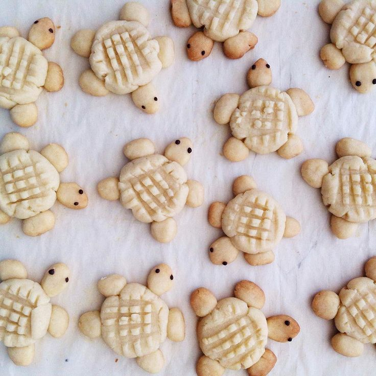 Can't wait to begin holiday baking soon. In the meantime, I'm dreaming of these turtles. 🐢🐢🐢