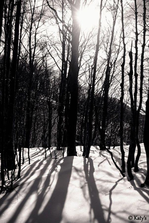 Snowshadows by Clodiana Prendi on 500px