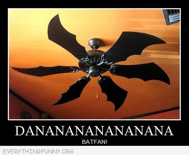 82 Best Images About Going Batty Amp Really Bat Jokes On