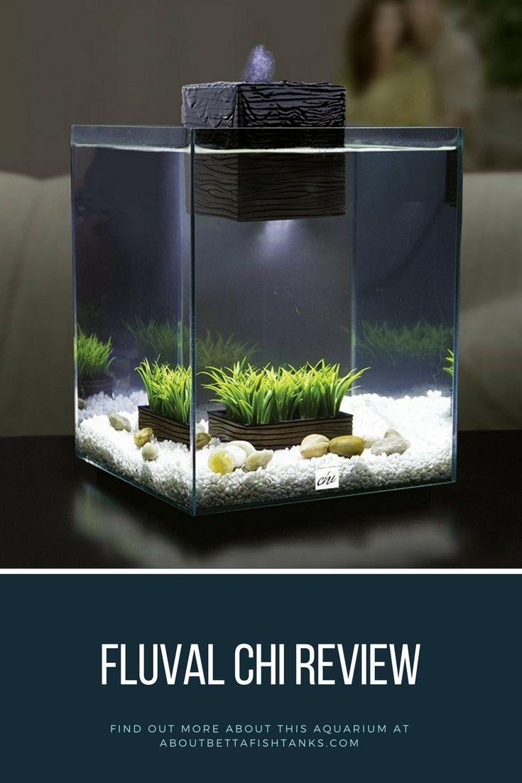 Fluval chi review is this 5 gallon fish tank worth it - Petit aquarium design ...