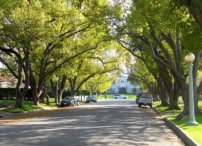 Pasadena Streets