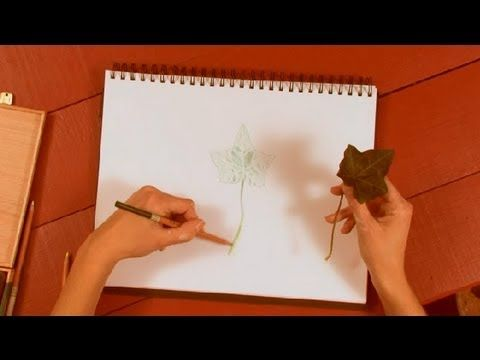 Subscribe Now: http://www.youtube.com/subscription_center?add_user=Ehow Watch More: http://www.youtube.com/Ehow Drawing leaves with colored pencil is a great...