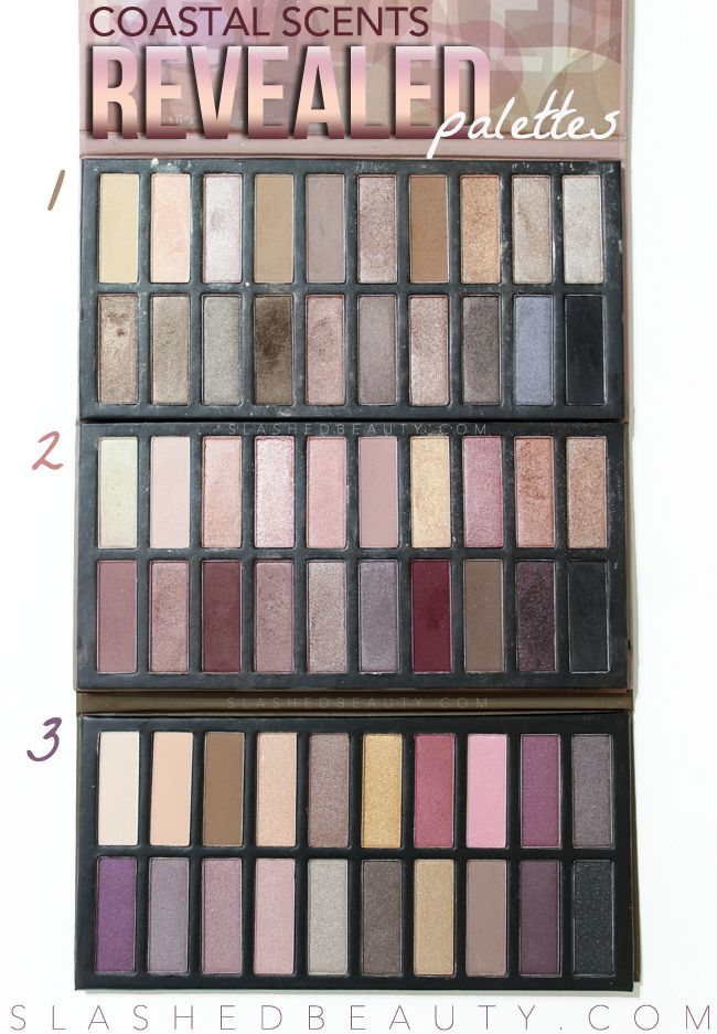 REVIEW & SWATCHES: Coastal Scents Revealed 3 Palette   Slashed Beauty