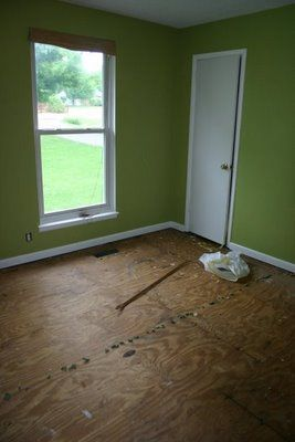 Painted sub floor or plywood floors!