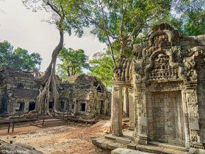 Ta Prohm - Tomb Raider Temple