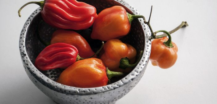 Capsicum Chinense: The Hottest Peppers On Earth #spicy