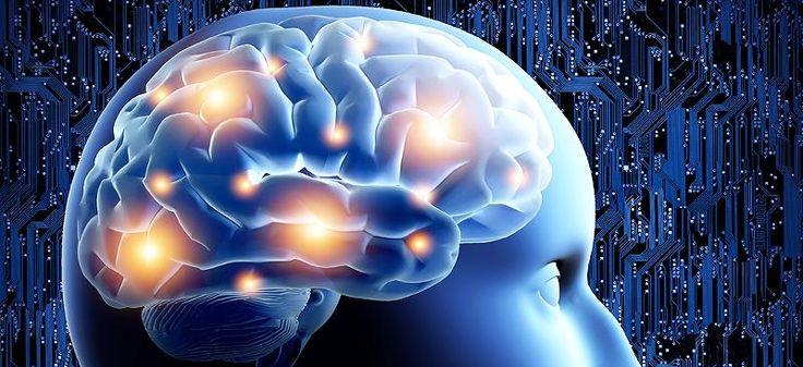 Gehirn-Booster gefällig?: Fünf Tipps, damit Sie nie wieder vergessen, wo die Schlüssel liegen - Video - Video - FOCUS Online