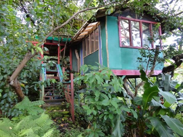 There are many ways to enjoy the lush tropical wilderness of the Hana beach area of Maui but this rental from  TreeHouses of Hawaii  is a dream come true for the adventurous type. Get back to nature with the bare necessities—hot water, propane stove and Tiki torch lighting (no electricity available).