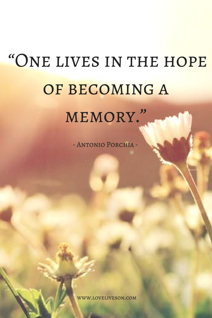 A beautiful memorial quote about the purpose of life.