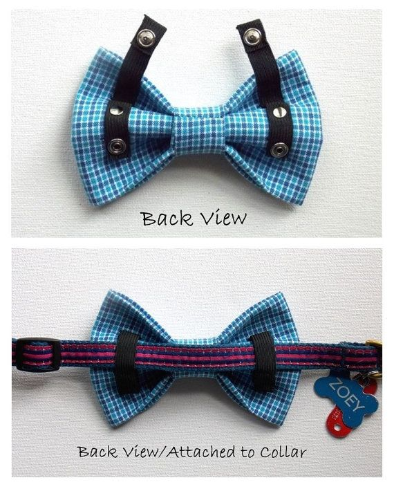 How To Make Neckties And Bowties For Dogs