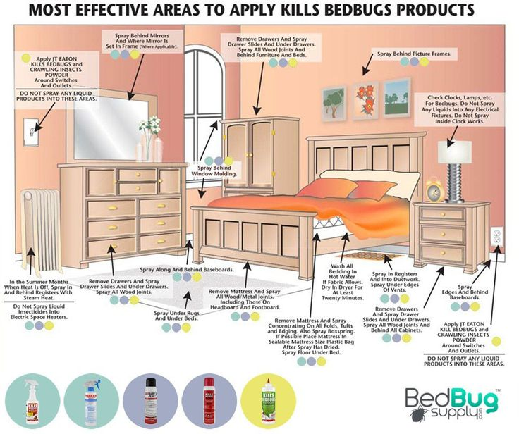 Are Bed Bugs Killed In The Washing Machine